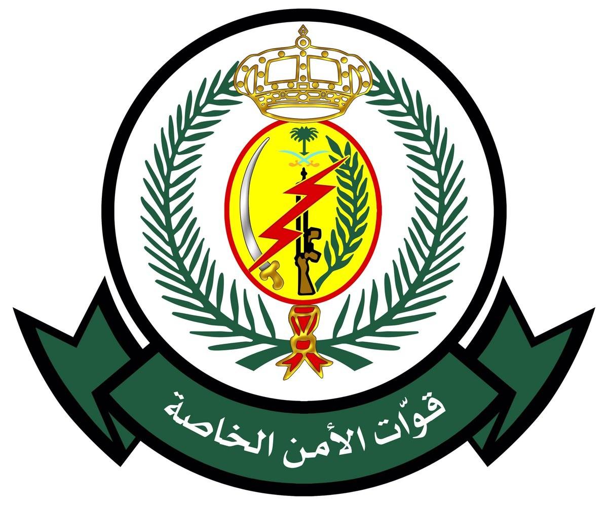القوات الخاصة للأمن والحماية