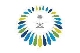 المركز السعودي للشراكات الاستراتيجية